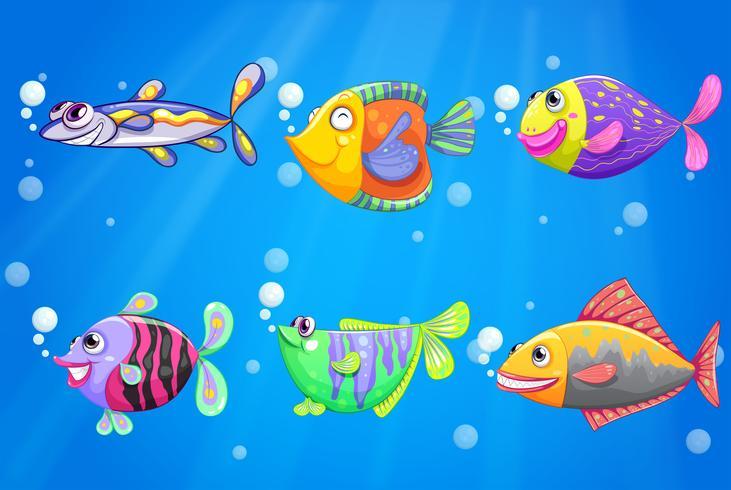 Um oceano com seis peixes coloridos