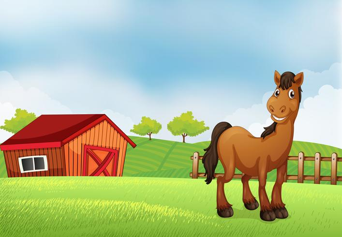 Un caballo en la granja