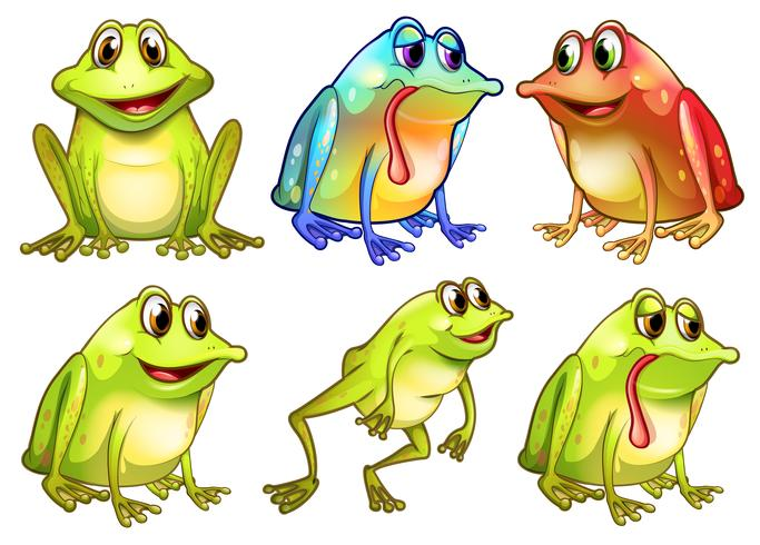 Six different frogs vector