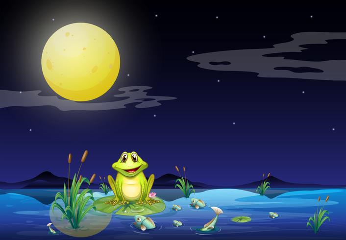 Frog and fishes at the lake under the bright fullmoon
