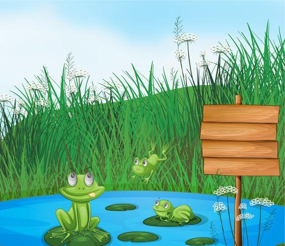 Drei verspielte Frösche am Teich neben einer leeren Beschilderung