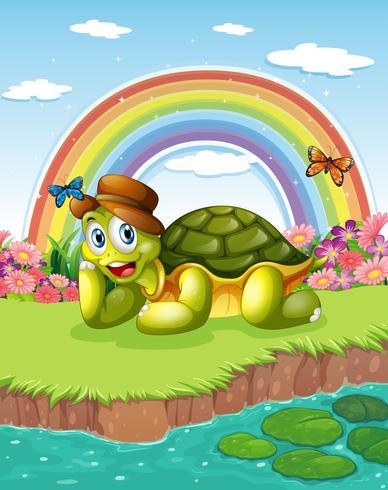 En sköldpadda vid dammen med en regnbåge i himlen