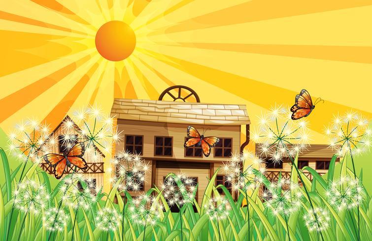 Um pôr do sol e as casas diferentes no topo das colinas
