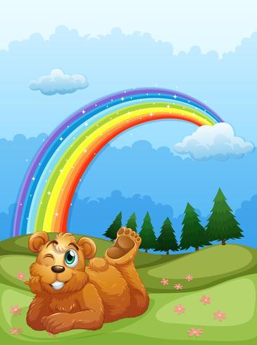 Un oso en la colina con un arco iris en el cielo.