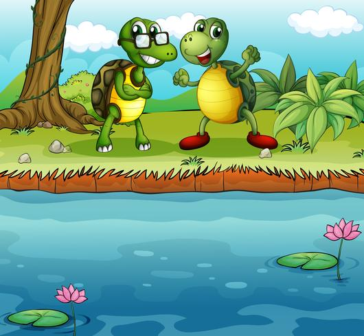 Two playful turtles near the pond