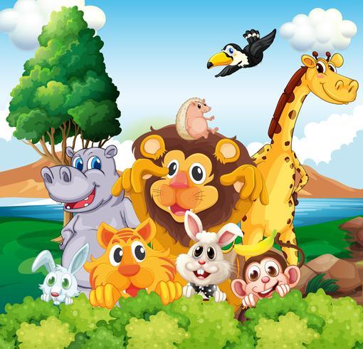 Un grupo de animales cerca del río.