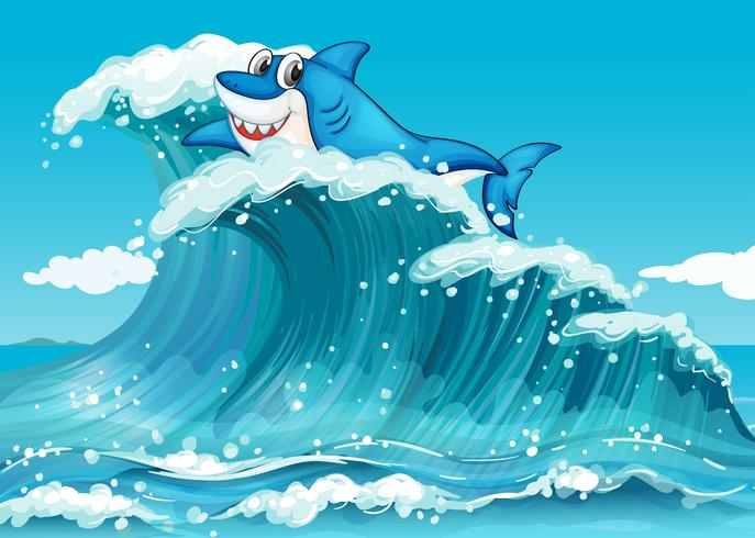 Un requin au dessus des grosses vagues