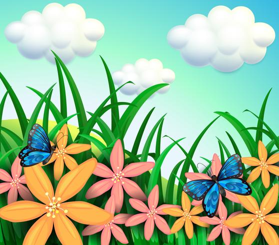 Butterflies and flowers at the garden  vector