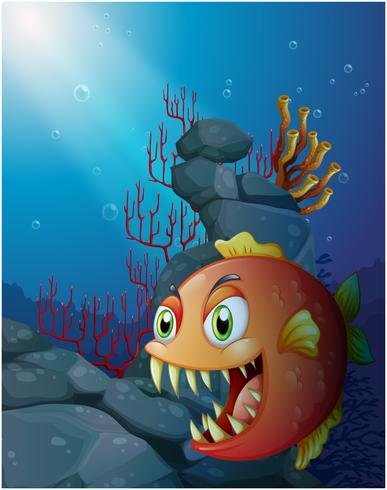 Piranha spaventoso sotto il mare vicino alle rocce