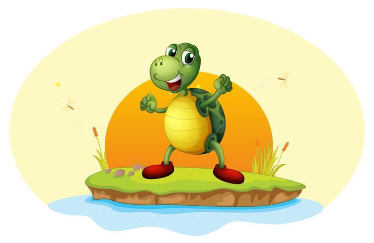 Uma tartaruga em uma pequena ilha
