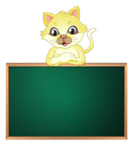 Eine gelbe Katze über der leeren Tafel