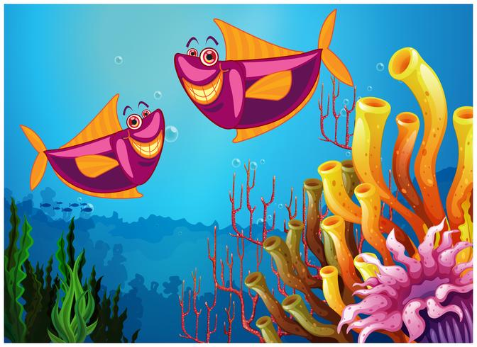 Fishes under the sea near the colorful corals vector