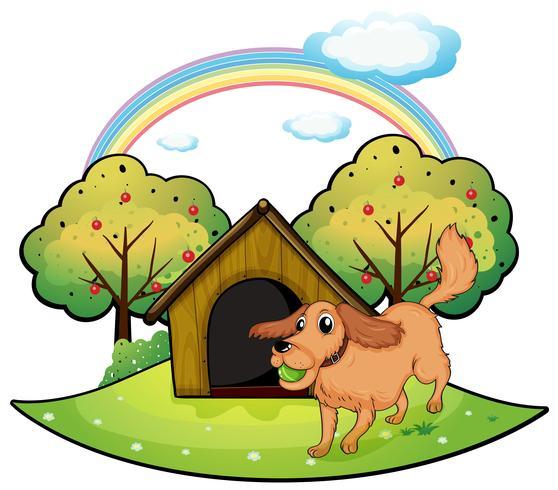 Ein Hund, der außerhalb der Hundehütte nahe dem Apfelbaum spielt