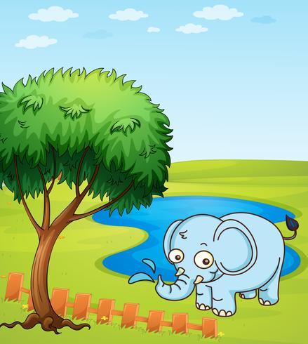 Een olifant die in een water speelt