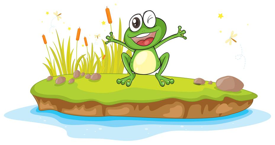 una rana e un'acqua