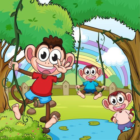 Spelar apor och en vacker regnbåge