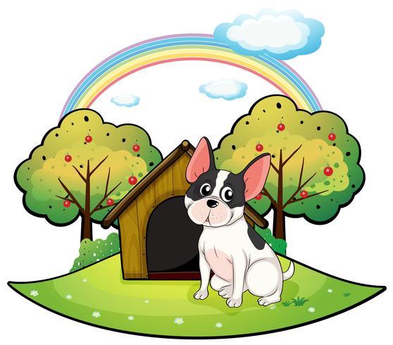 Un cane accanto a una casa di cane