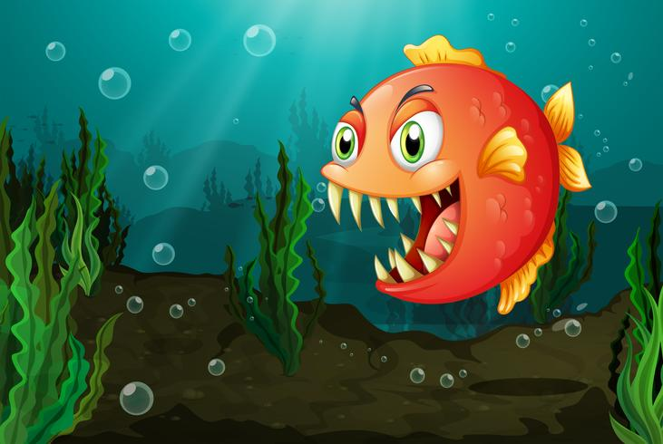 A piranha under the sea with seaweeds vector