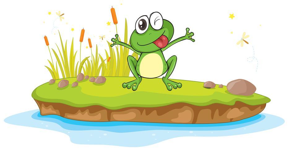 ein Frosch und ein Wasser