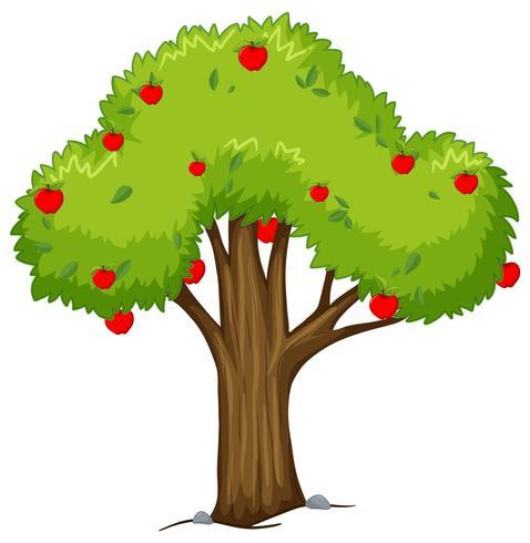 Apple-boom met rode appelen