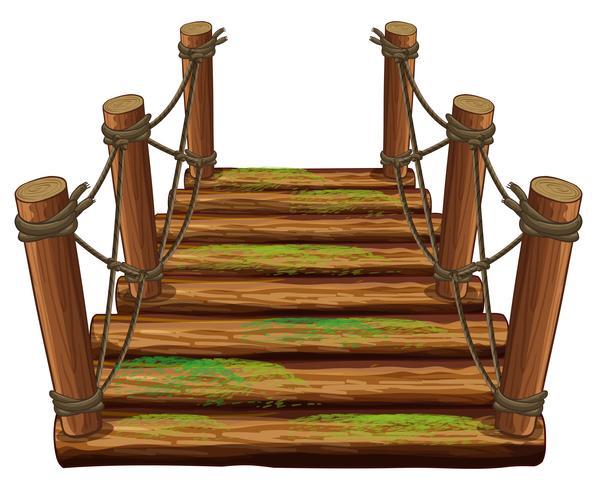 Träbro med grön mos