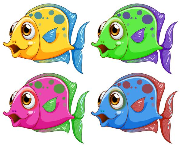 Cuatro peces de colores