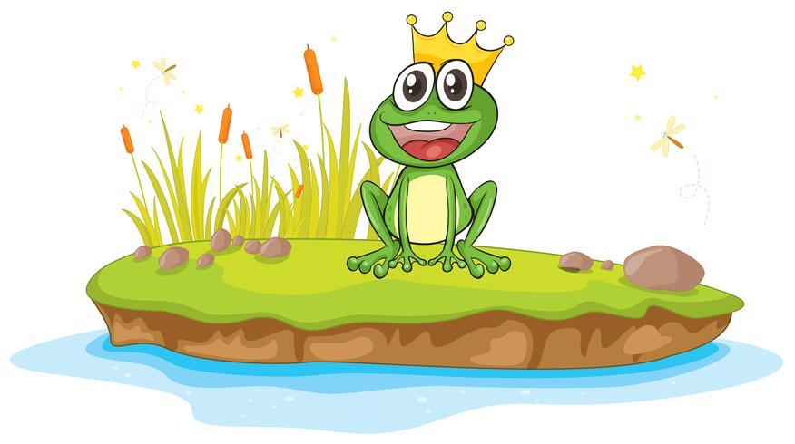 een kikker en een water