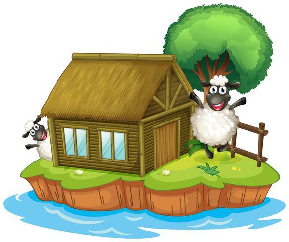 Een eiland met een geboortehuis en twee schapen