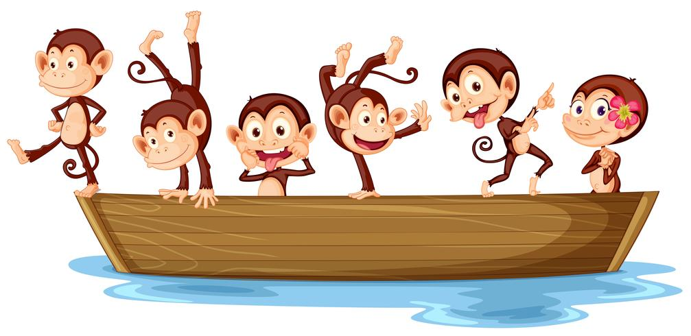 Monkeys and boat