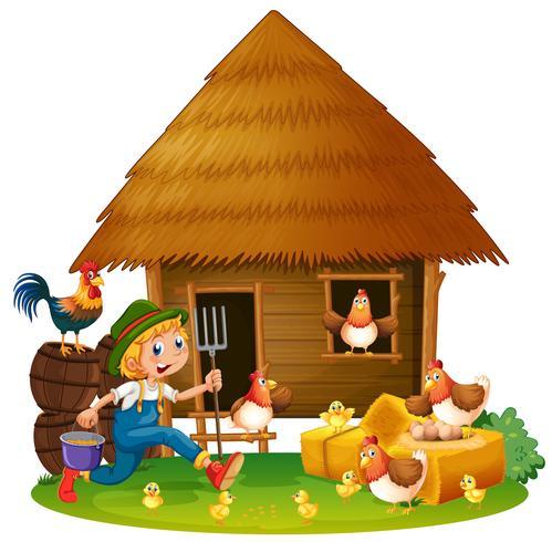 Kippen en boer thuis