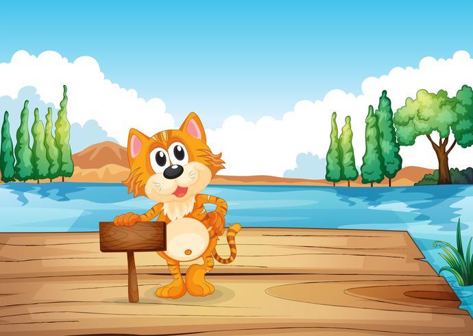Un gatto nel fiume vicino al vuoto segnaletica