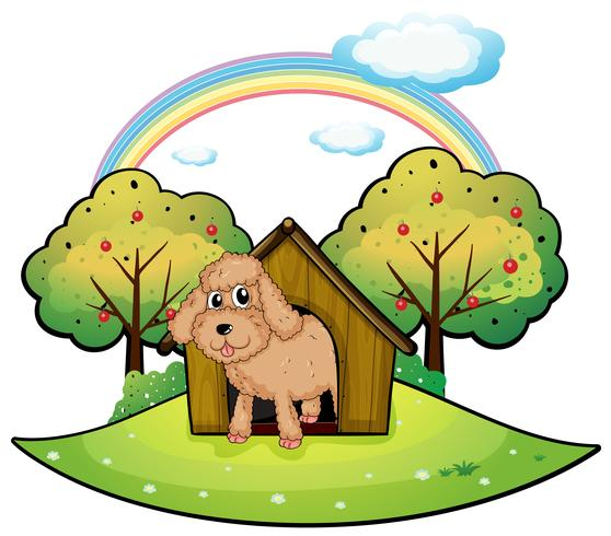 A dog with a doghouse