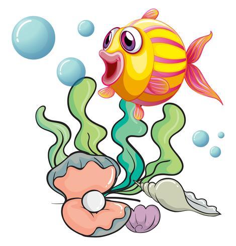 Ein bunter Fisch unter dem Meer mit Muscheln