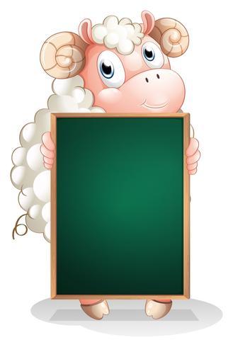 Uma ovelha tímida segurando uma lousa vazia