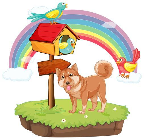 Cane e casetta per gli uccelli