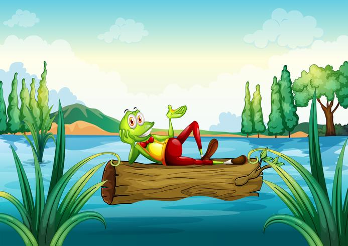 Una rana juguetona que yace sobre el tronco que flota.