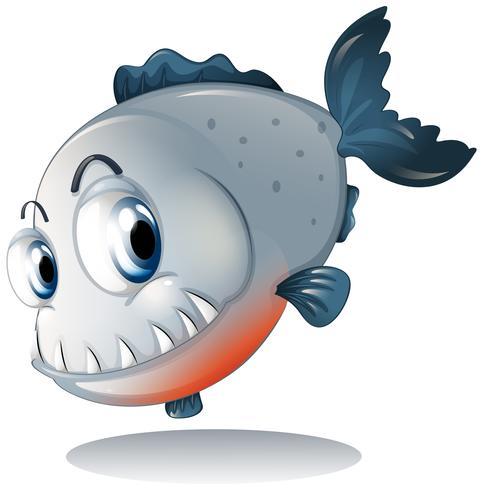 A big gray piranha vector