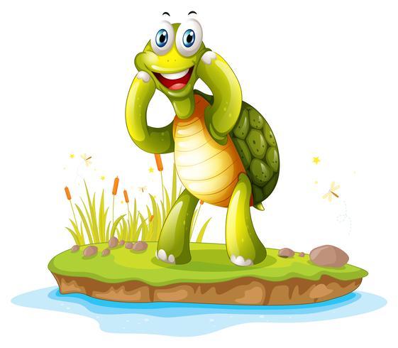 Una tartaruga sorridente in un'isola