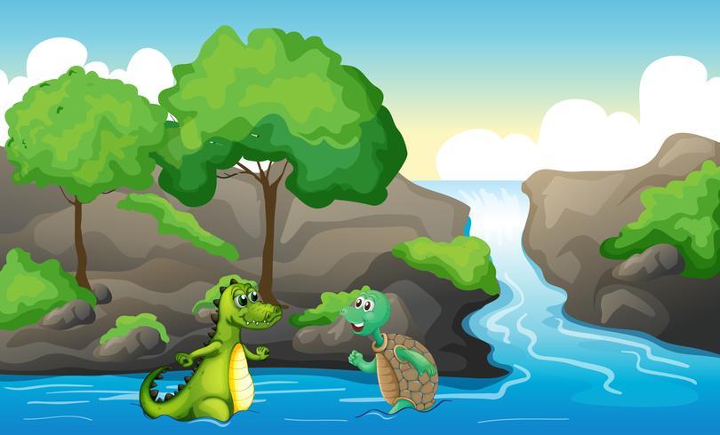 Uma tartaruga e um crocodilo