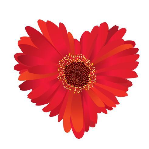 fiore rosso con amore a forma di cuore.
