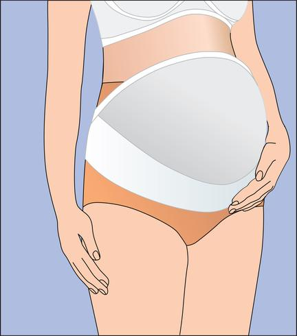 Linda banda de ropa interior para mujeres embarazadas para vientre de apoyo. Vendaje vector