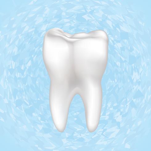 Tand geïsoleerd. Tanden wit bord. Tandheelkundige medische illustratie.