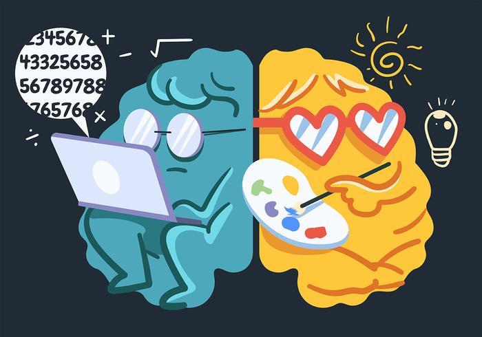Cerveau humain, hémisphères, maths, art