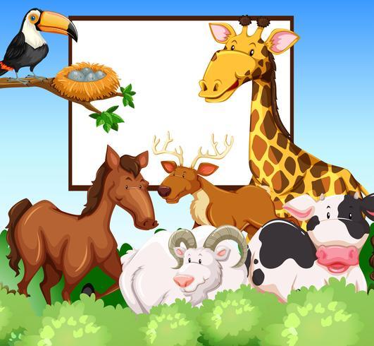Frame design with wild animals vector