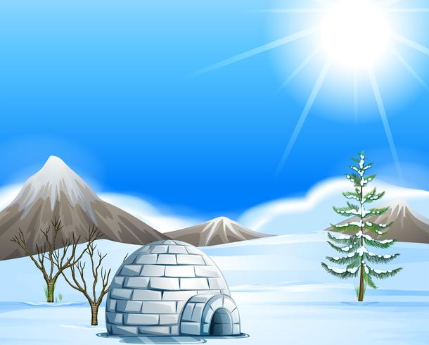 Igloo in the north pole vector