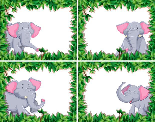 niedlicher Elefant Satz von vier