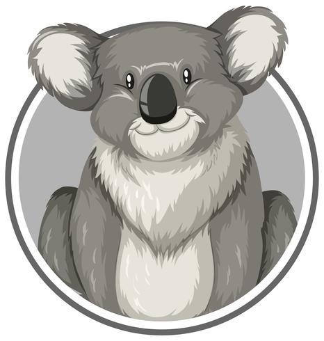Vendita all ingrosso di sconti cartone animato koala in messa da