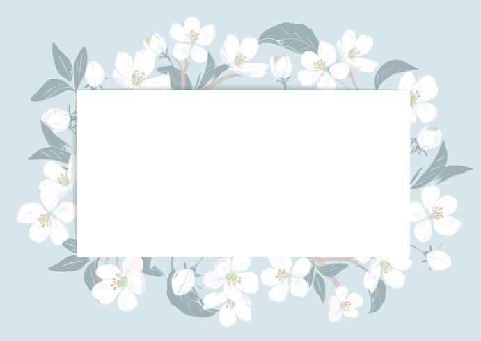 Modello di carta dei fiori di ciliegio con testo. Cornice floreale su sfondo blu pastello. Fiori bianchi. Illustrazione vettoriale