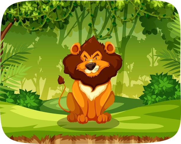 A lion in forest