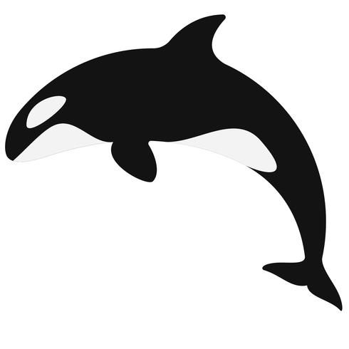 orca assassina